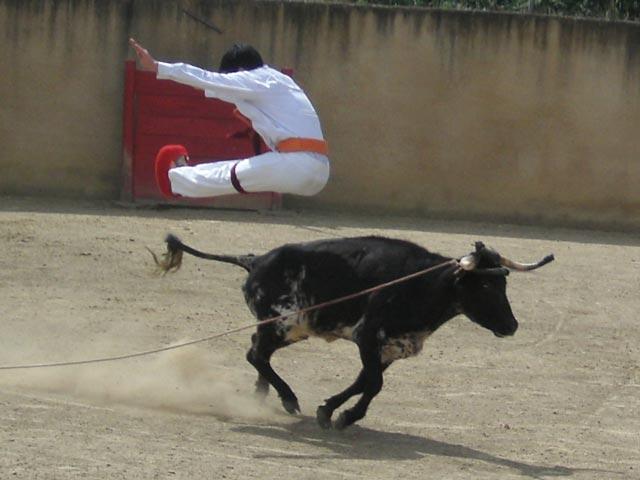 Joli saut - course landaise